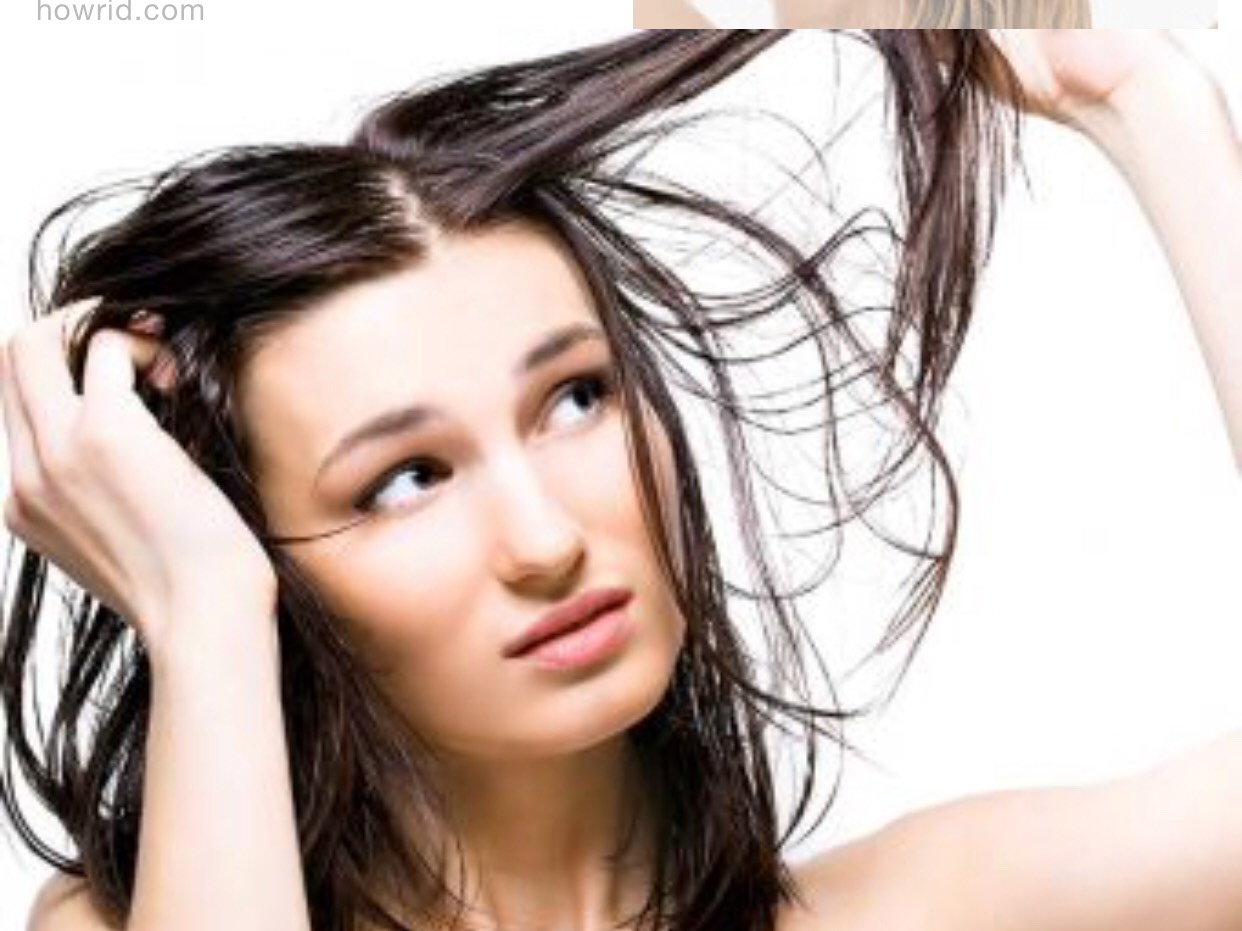 Managing Oily, Greasy Hair