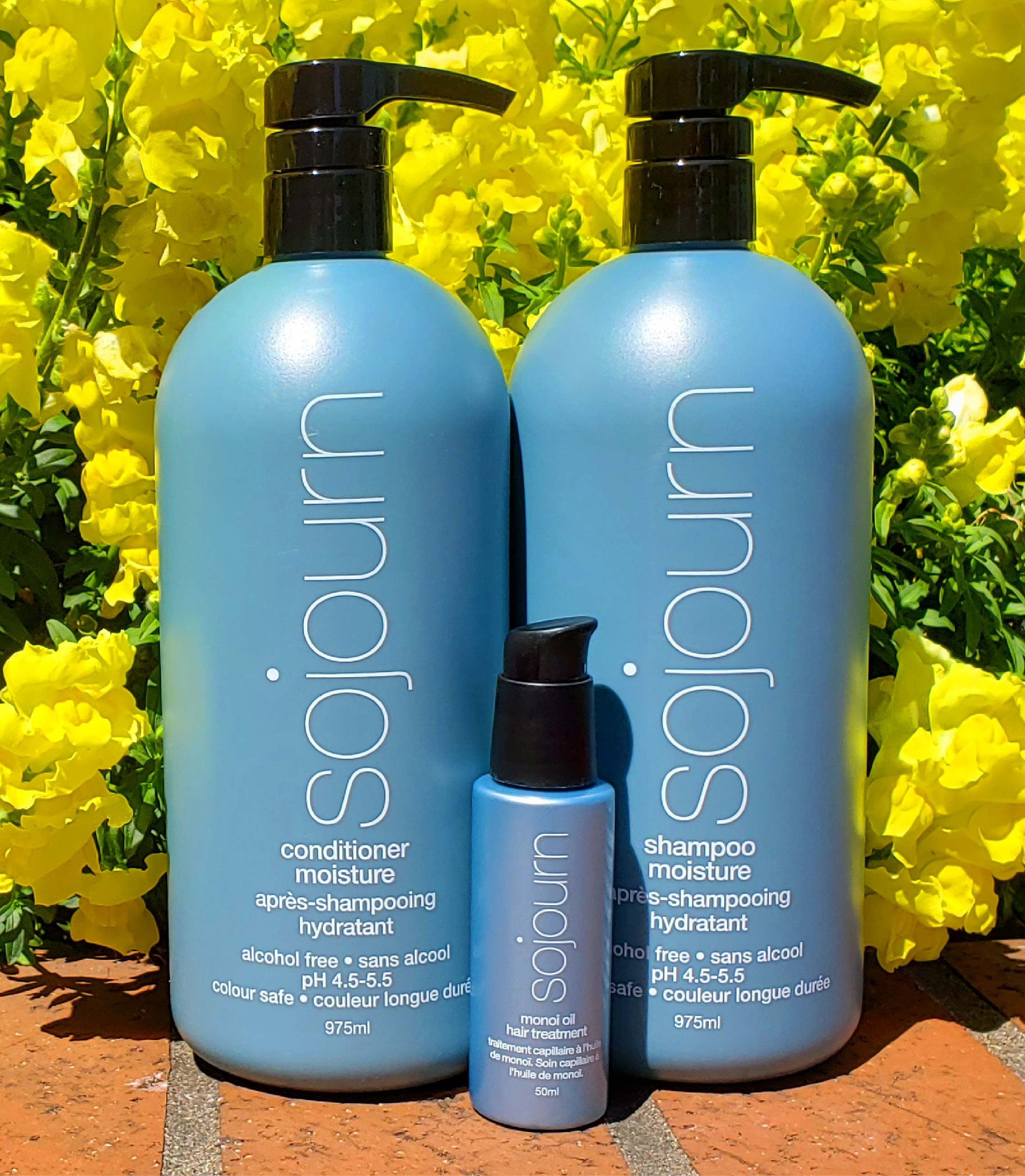 Moisture Power Trio -Ultimate Hair Hydration